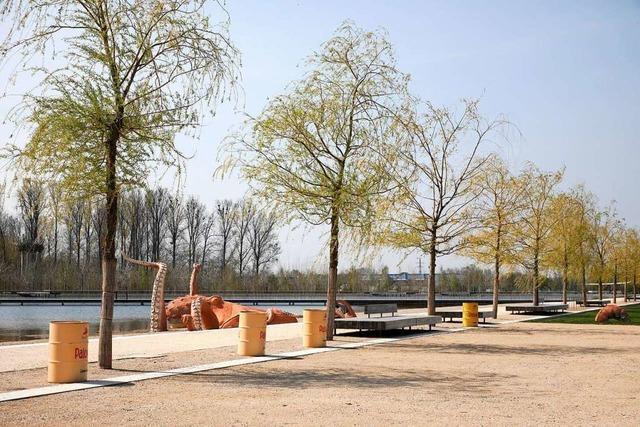 Im Seepark sollen Parkplätze entstehen