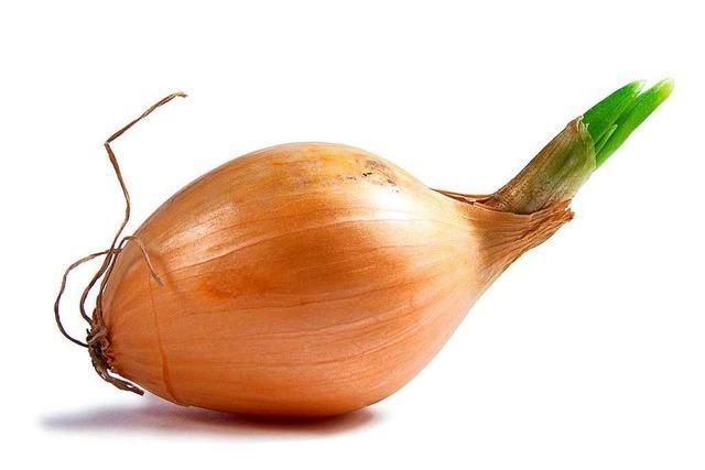 Kann man Zwiebeln so schneiden, dass man nicht weinen muss?