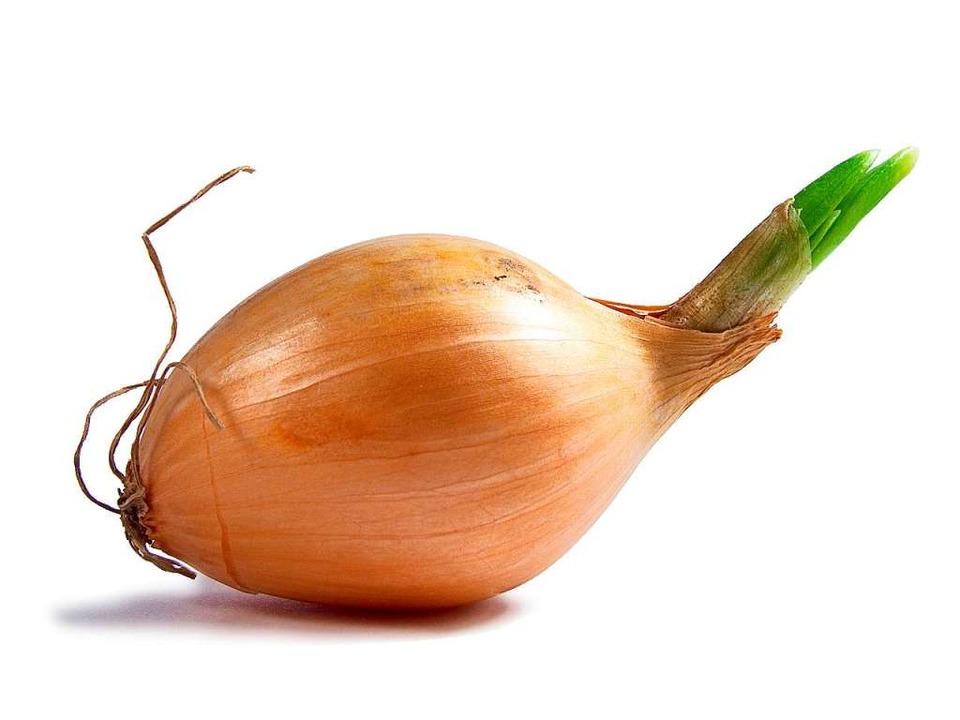 Kann man Zwiebeln so schneiden, dass man nicht weinen muss?  | Foto: photocase.de/ciapciap