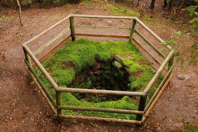 In Wolfslöchern sollten einst Wölfe gefangen werden – einige gibt es noch heute
