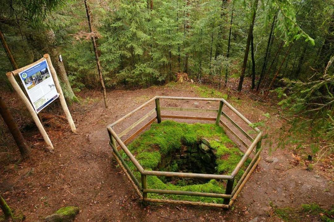 Heute ein umzäuntes Denkmal: Wolfsloch...chwarzwald <BZ-Fotos>Schöll</BZ-Fotos>