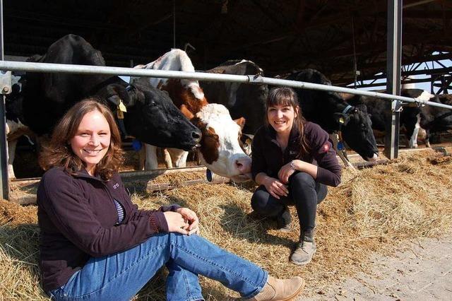 Milchviehbetrieb Zinsel und Haas sind