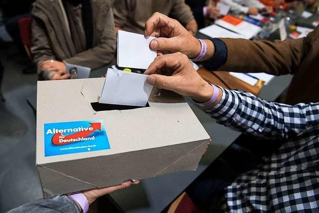 Im AfD-Kreisverband Breisgau-Hochschwarzwald tobt ein Machtkampf