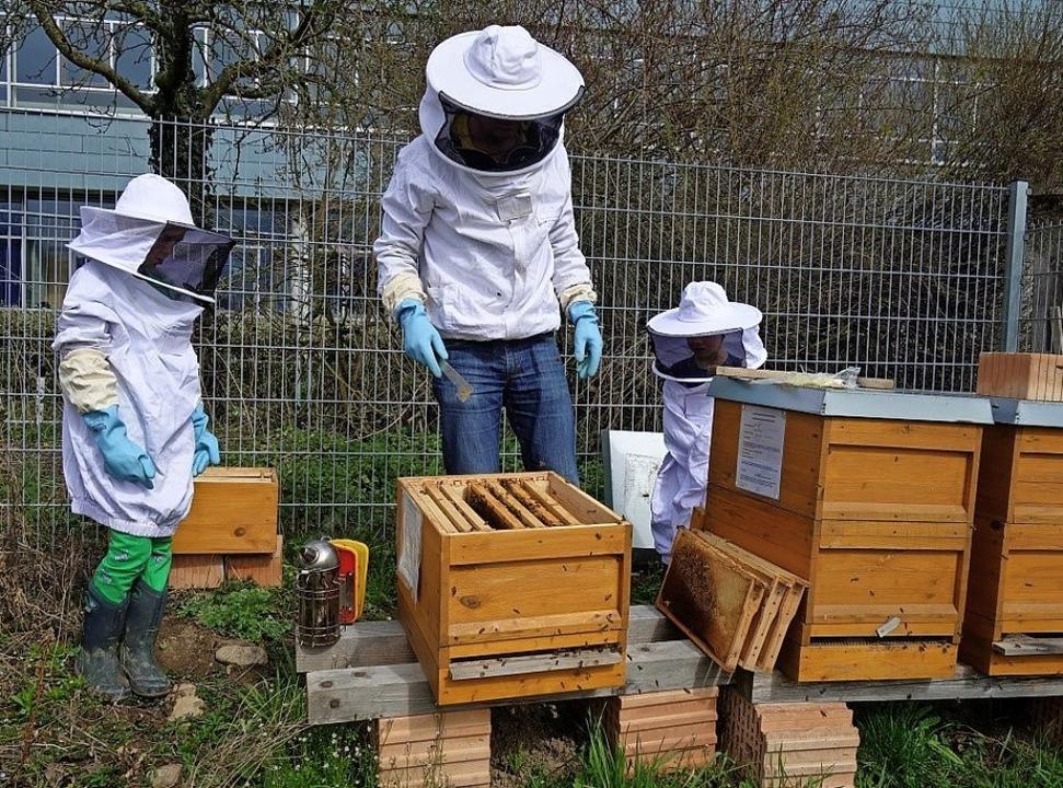 Imker Andreas Zeibert zeigt Zisch-Reporter Levin (links) seine Bienen.   | Foto: privat