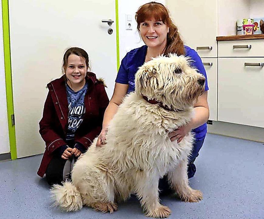 Zisch-Reporterin Melina Laule hat Anja...#8211; in der Tierarztpraxis besucht.   | Foto: Privat