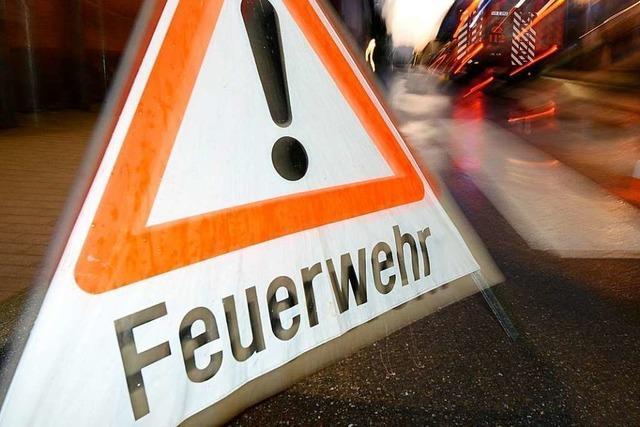 Heitersheimer Feuerwehr rückt wegen Gasalarm aus