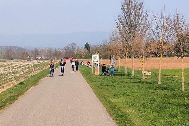 Frische Luft lockt in Rheinfelden viele nach draußen