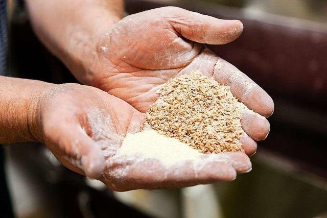 Wie eine Bonndorfer Mühle die enorme Mehl-Nachfrage bewältigt hat