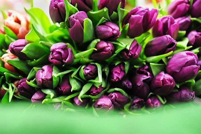 Arzthelferin Simone Tritschler freut sich über Tulpen von Patienten