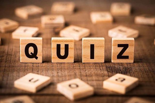 Zwei Freiburger laden zum Live-Online-Quiz ein