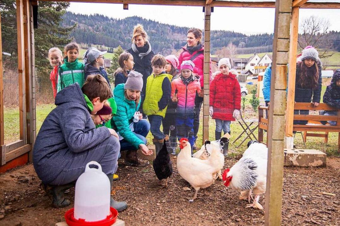 Die Schulklasse bei den Hühnern.   | Foto: Joss Andres