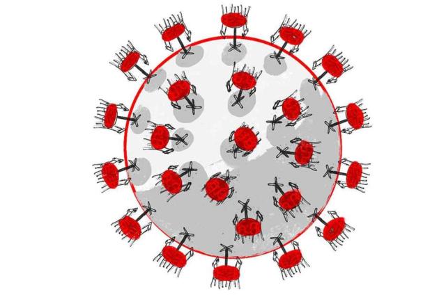 Grafiken: Das Coronavirus in Baden-Württemberg und Südbaden