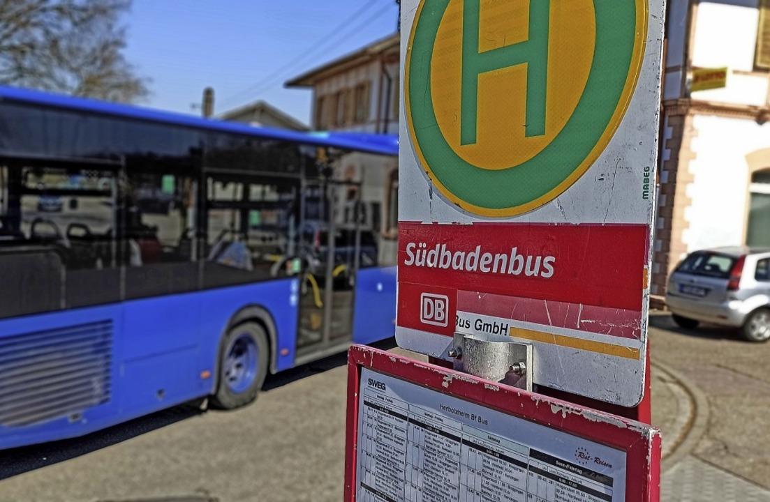 Ein Bus an der Haltestelle am Herbolzh...ngen am Mittwoch noch die alten Pläne.  | Foto: Martin Wendel