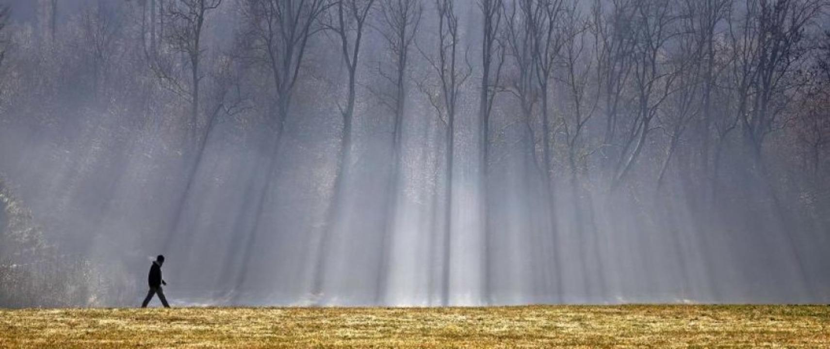 Wer allein unterwegs ist, kann seinem ...in Mann geht vor einem Wald spazieren.    Foto: Christoph Soeder