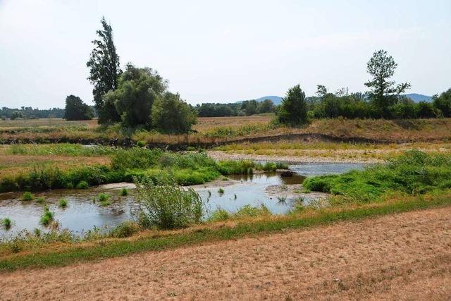 Teningen: Auch die Gemeinde kontrolliert