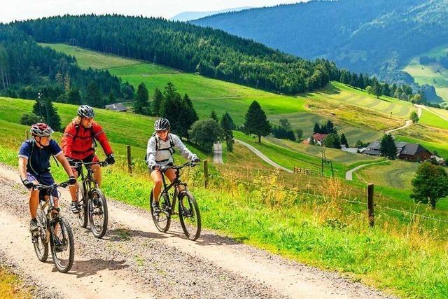 Bike Sport World trotzt der Corona-Krise: Onlineshop und Werkstatt weiterhin geöffnet