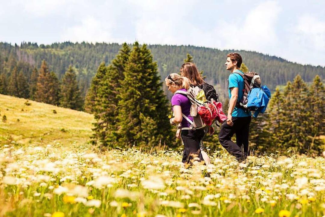 Das schöne Wetter zieht in den Schwarz...chtig, daheim zu bleiben (Symbolbild).    Foto: Schwarzwald Tourismus GmbH