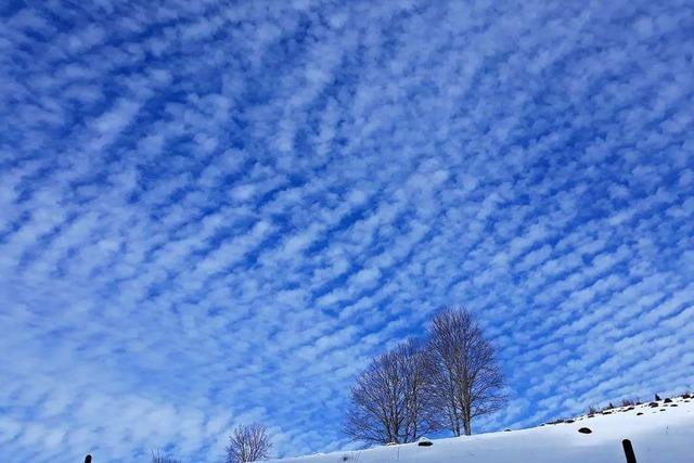 Schäfchenwolken über Bernau
