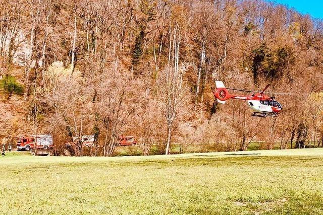 Zwei Verletzte bei Kletterunfall im Wald zwischen Bollschweil und Ehrenkirchen