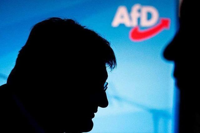 Meuthen rudert zurück: Spaltung der AfD kein Thema