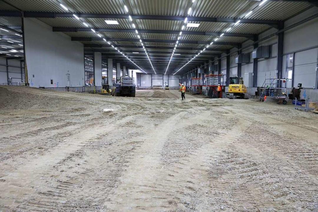 Das Baufeld Süd ist vollständig wiederverfüllt.  | Foto: Roche Pharma Grenzach-Wyhlen