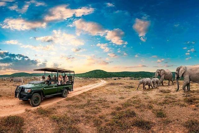 Atemberaubendes Südafrika