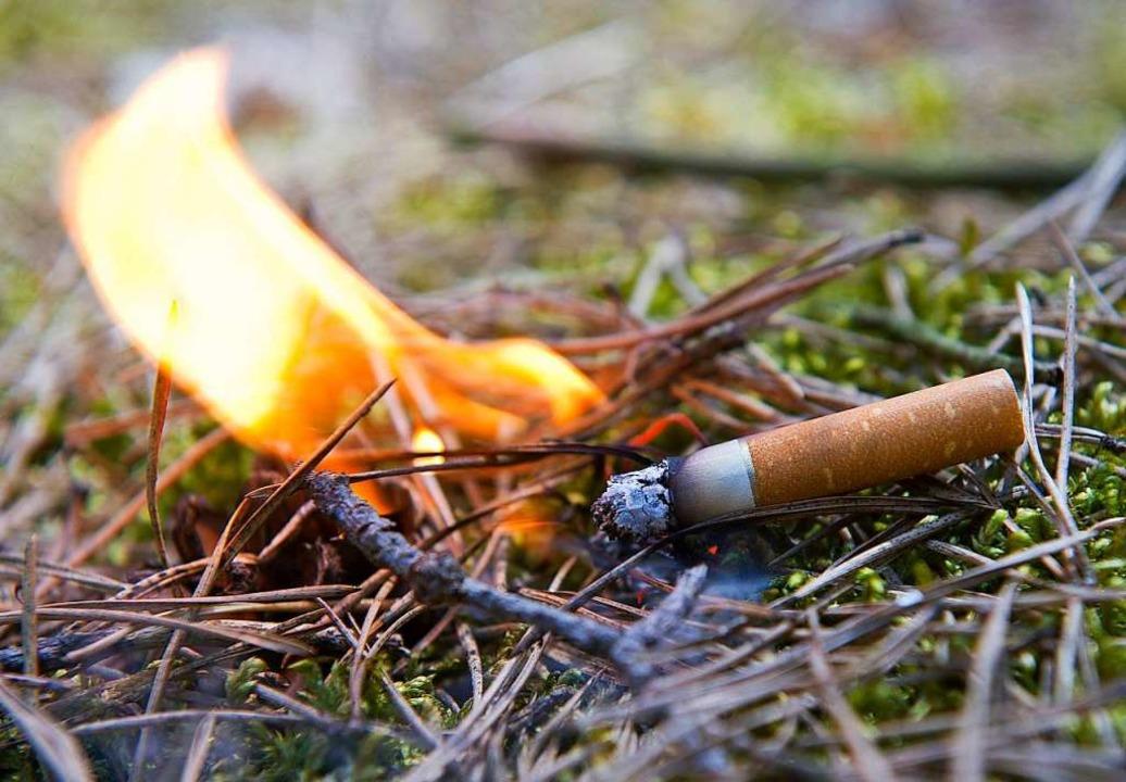 Im Wald herrscht Rauchverbot    Foto: Patrick Pleul