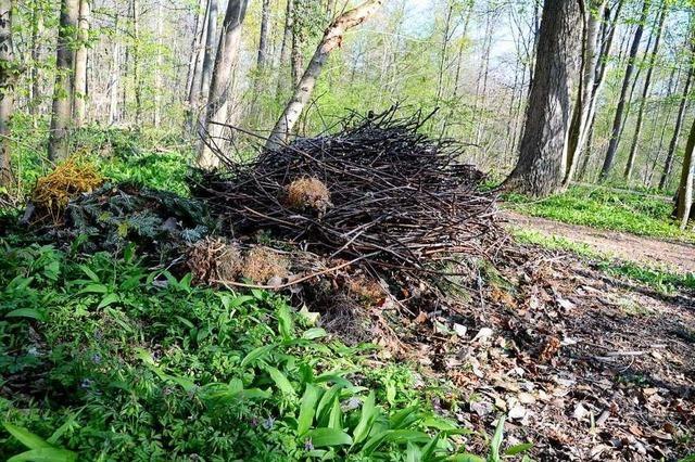 Kritik an Schließung der Grünabfallplätze und Recyclinghöfe wächst