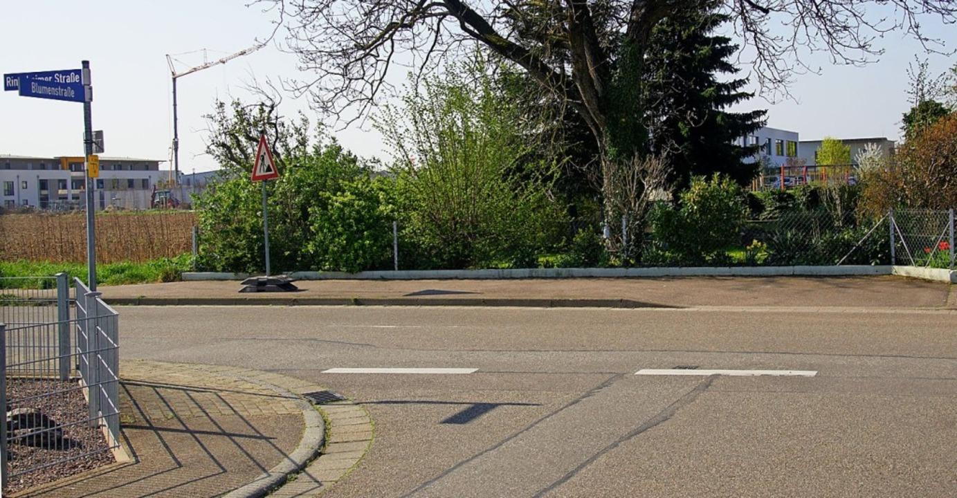 Die neue Schule ist hinter den Bäumen ...kehr muss noch einmal gezählt werden.     Foto: Ilona Huege