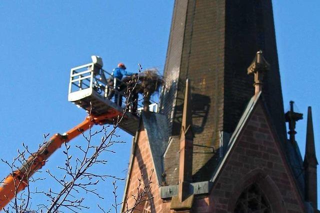 Warum wurde in Eichstetten ein Storchennest von der Kirche entfernt?