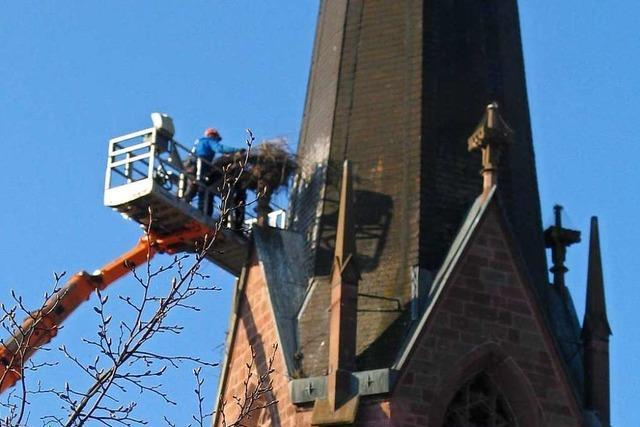 Warum wurde ein Storchennest von der Kirche in Eichstetten entfernt?
