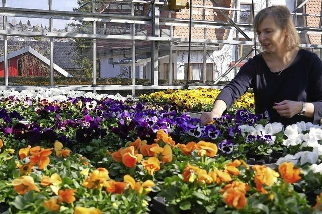 Blumen gibt es auf Bestellung