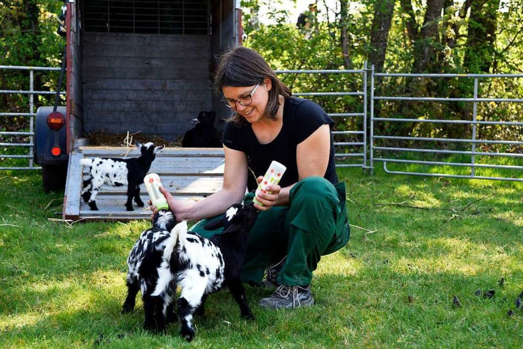 Tierpflegerin Jutta Demps füttert Ziegen-Babys.    Foto: Thomas Kunz