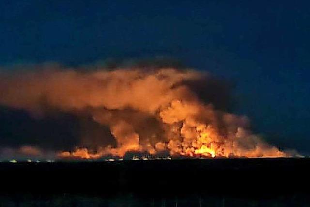 Ukraine kämpft mit Großaufgebot gegen Waldbrände bei Tschernobyl