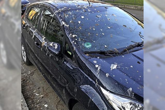MARKTGEFLÜSTER: Ein Opfer der Vogelkacke