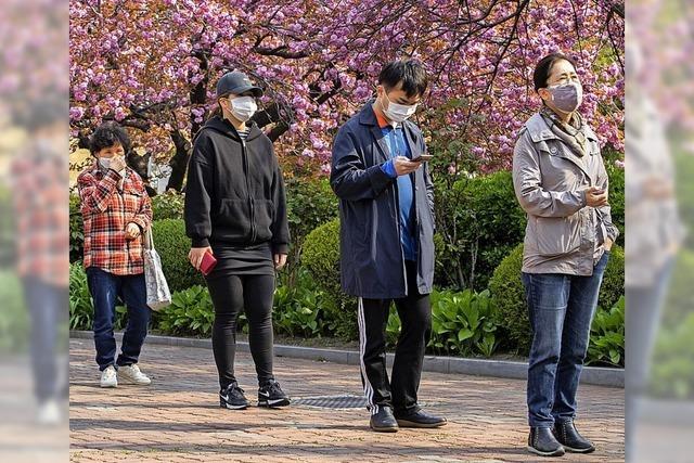 Südkoreas Bevölkerung steht hinter der Regierung