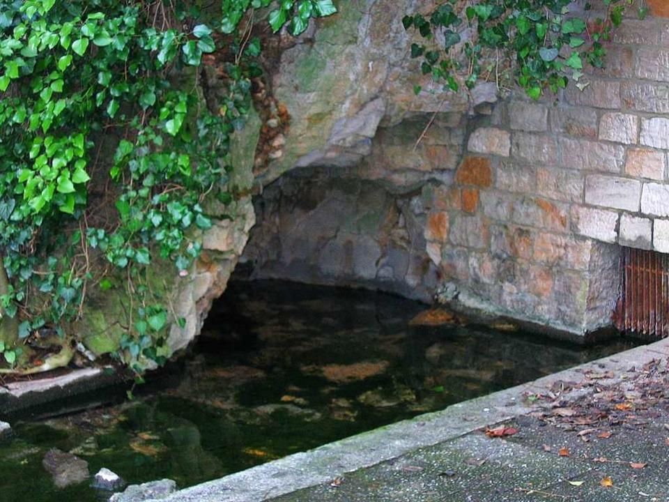 Die Quelle in Schlatt, hier auf einem ...erreicht zurzeit immer weniger Wasser.  | Foto: Karlheinz Scherfling
