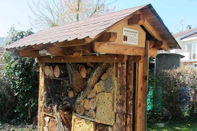 Das Wildbienenhotel in Weil am Rhein ist voll belegt