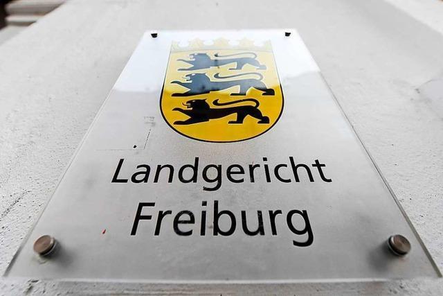 Missbrauchsprozess gegen 41-Jährigen Freiburger wird in der Krise fortgeführt