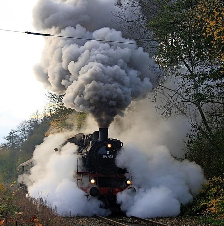 Unter Volldampf: Der Rebenbummler im Jahr 2009.     Foto: Roland Vitt