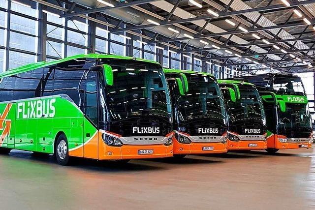 Für lokale Busunternehmer geht es jetzt ums nackte Überleben