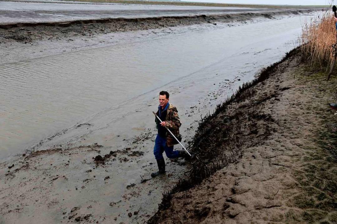 Wenn die Ebbe den Meeresboden freilegt...r Fritz Schröder archäologische Funde.  | Foto: -