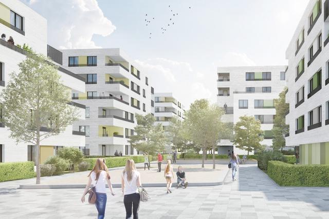 Wo die Freiburger Stadtbau gerade Wohnraum schafft