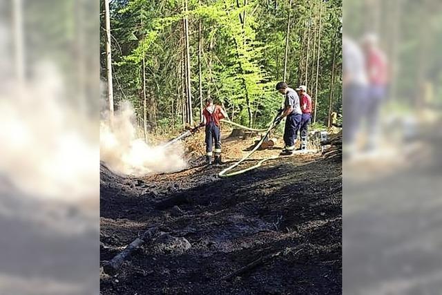 Murger Wehr löscht Wald
