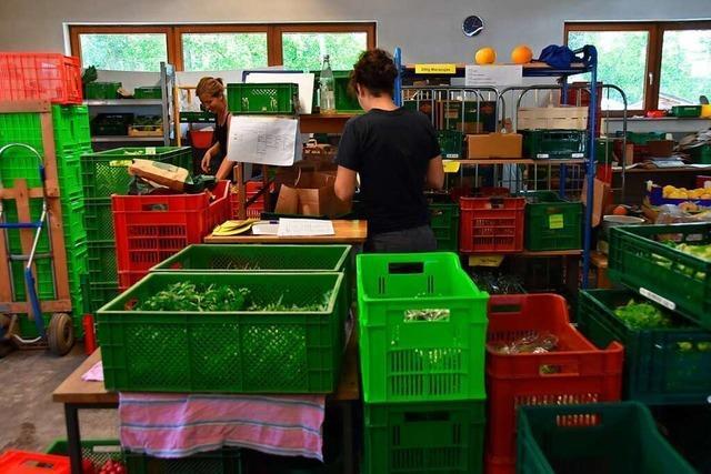 Nachfrage nach Obst- und Gemüsekisten geht durch die Decke