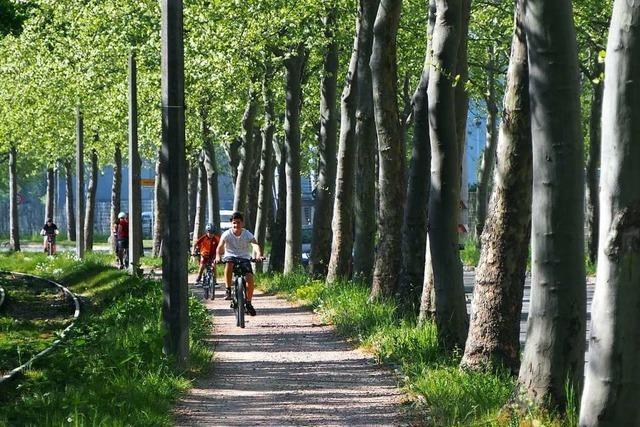 Das Land fördert Radwege in Weil am Rhein und Kandern – vielleicht