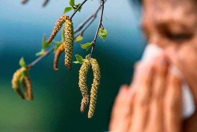 Freiburger Medizinerin rät Allergikern, ihre Beschwerden zu erforschen