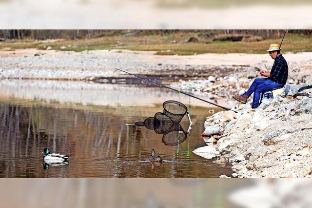 Begegnungen am Seeufer mit Anglern und Enten