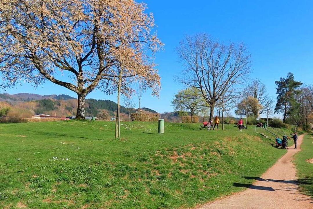 Am Rheinufer bei Brennet genießen in d...enige Spaziergänger das schöne Wetter.  | Foto: Gerd Leutenecker