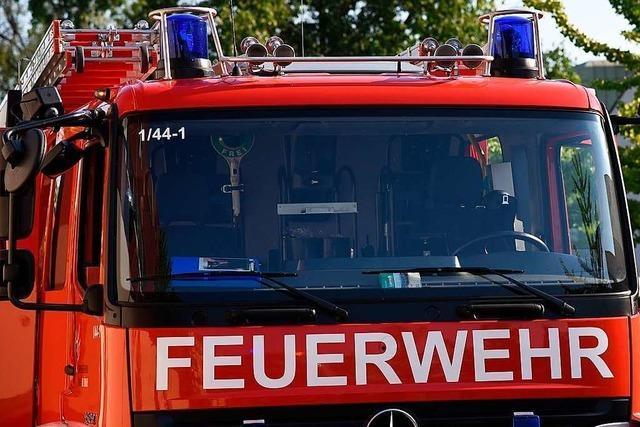 In Lörrach-Haagen ist eine Gartenhütte abgebrannt